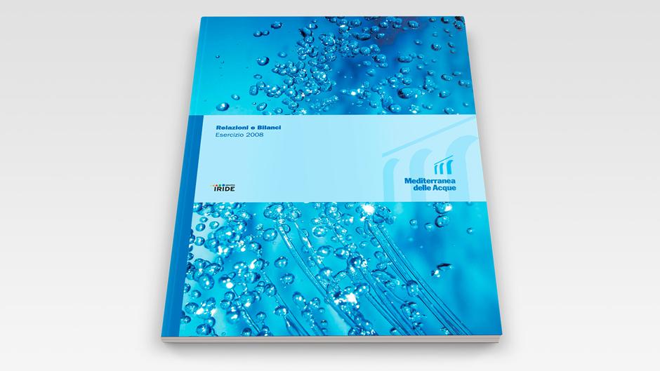 Bilancio Mediterranea delle Acque 2008